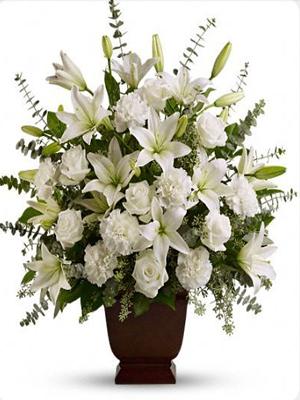 Ordena Ahora Luz Serena Envia Flores En León Guanajuato